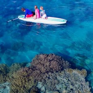 maritimo 60 hamilton island kids and coral
