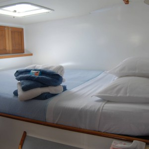 fusion 40 catamaran bedroom