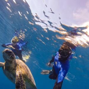 whitsunday getaway catamaran snorkeling