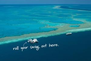 Reef Sleep